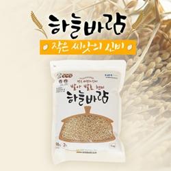 발아발효 현미 1kg/3kg(2019년산)